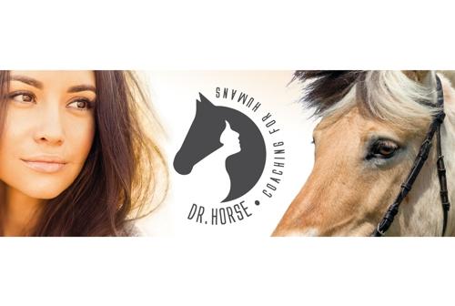 start-dr-horse